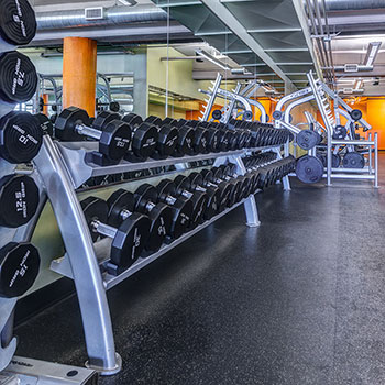 A variety of dumbbells in our Denver, Colorado gym.