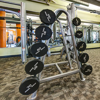 Featuring a variety of free-weights in our Denver, Colorado fitness center.
