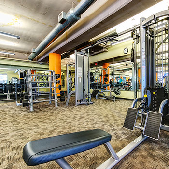Our facilities include weight training in our Denver, Colorado gym.